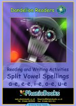 Split Vowel Spelling Workbook  DWR10